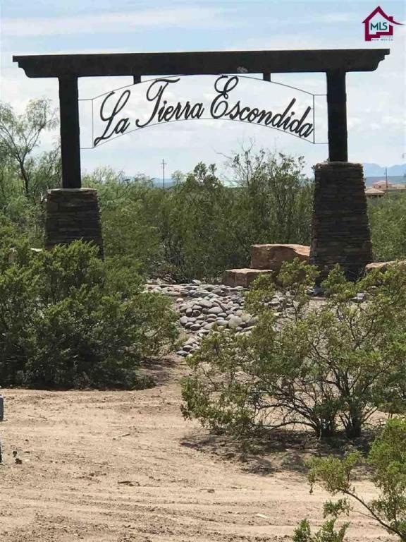 5117 Via Estrella, Las Cruces, NM 88011 (MLS #1702125) :: Steinborn & Associates Real Estate