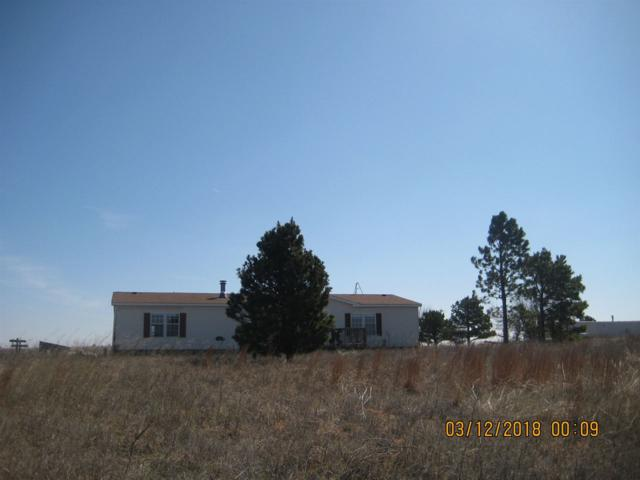 344 NE Wichita Meadows Ln, Fletcher, OK 73541 (MLS #150428) :: Pam & Barry's Team - RE/MAX Professionals