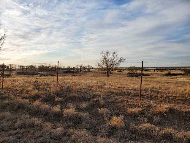 TBD Lake Rd Tract 3, Fletcher, OK 73541 (MLS #155234) :: Pam & Barry's Team - RE/MAX Professionals