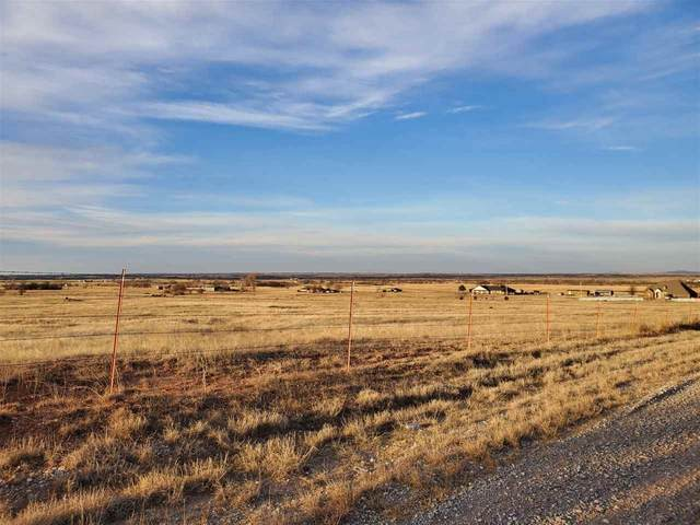 TBD Lake Rd Tract 4, Fletcher, OK 73541 (MLS #155241) :: Pam & Barry's Team - RE/MAX Professionals