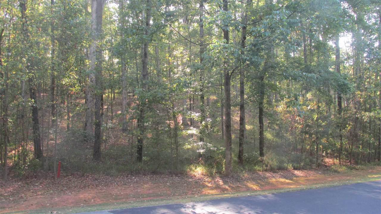 1171 Callahans Ridge Road - Photo 1