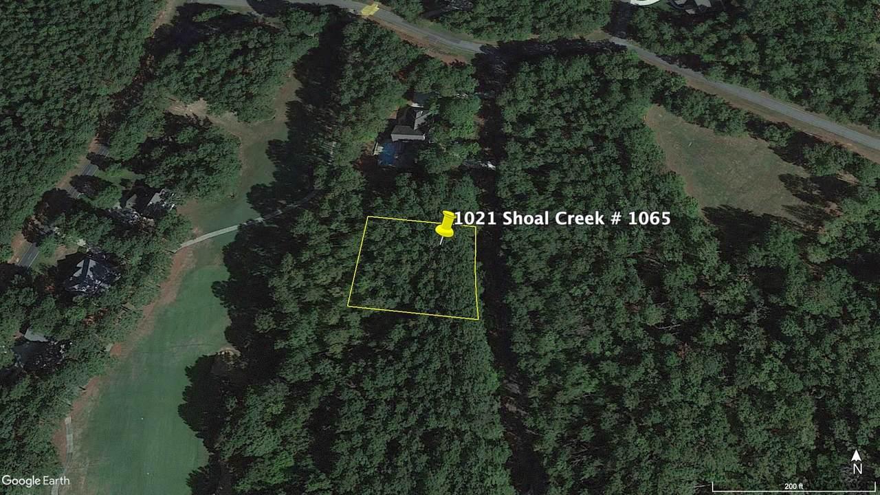 1021 Shoal Creek Court - Photo 1