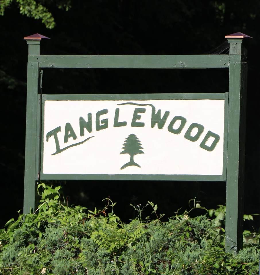 0 Lot 10 Tanglewood Drive - Photo 1