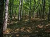 1060 Hardwood Hollow - Photo 5