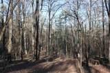 1051 Shadow Creek Way - Photo 15