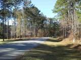 1101 Shadow Creek Way - Photo 4