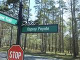 1711 Osprey Poynte - Photo 3