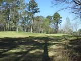 1711 Osprey Poynte - Photo 9