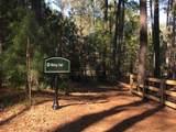 1011 Shadow Creek Way - Photo 24