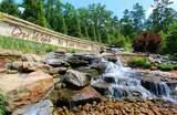 1201 Branch Creek Way - Photo 50