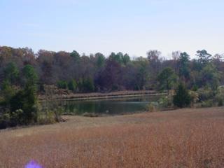 0 White Plains Road, Crawfordville, GA 31087 (MLS #45676) :: Team Lake Country