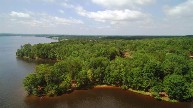 106 Sapelo Pointe, Eatonton, GA 31024 (MLS #47301) :: Team Lake Country