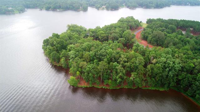 102 Sapelo Pointe, Eatonton, GA 31024 (MLS #47302) :: Team Lake Country
