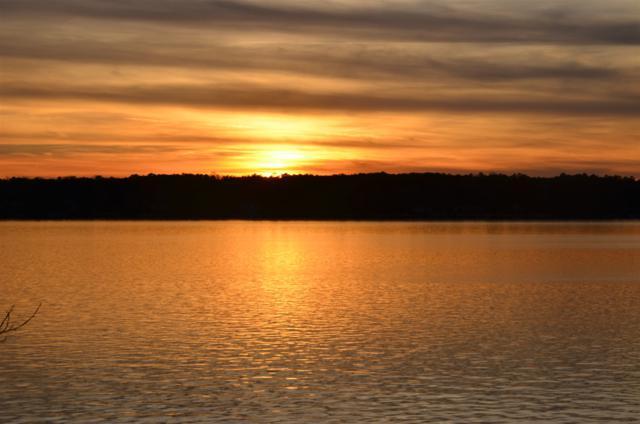 1101 Kingfisher Point, Greensboro, GA 30642 (MLS #47566) :: Jo Jones & Company