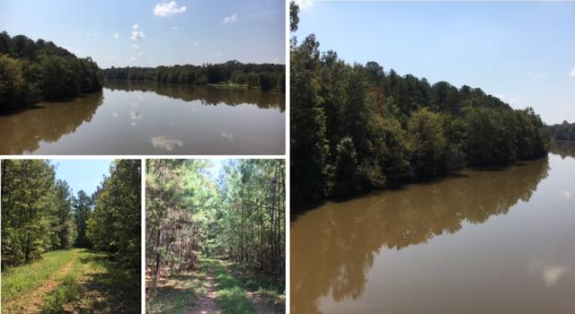 Madison Highway, Greensboro, GA 30642 (MLS #49692) :: Team Lake Country