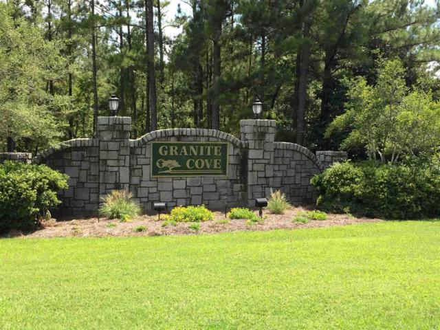 1010 Armour Bridge Road, Greensboro, GA 30642 (MLS #51385) :: Team Lake Country