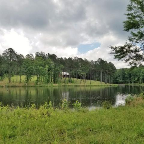 1602 Ohara Standard Road, TIGNALL, GA 30668 (MLS #52003) :: Team Lake Country