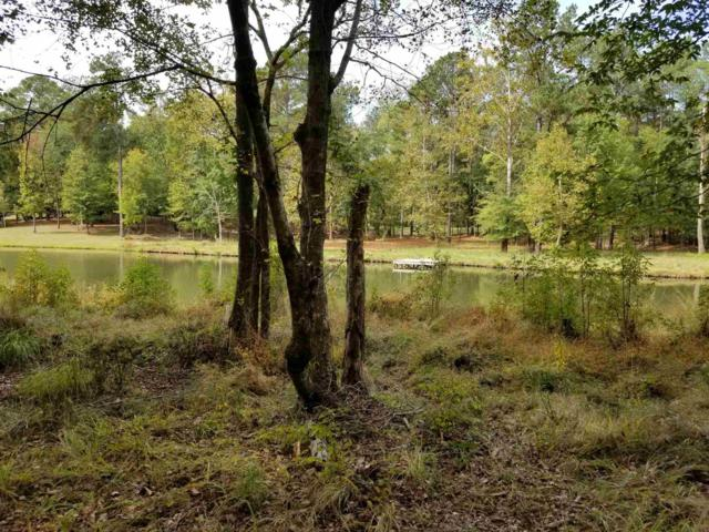 1130 Shadow Creek Way, Greensboro, GA 30642 (MLS #52709) :: Team Lake Country