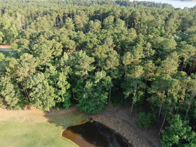 1061 Big Water Circle, Greensboro, GA 30642 (MLS #54017) :: Team Lake Country