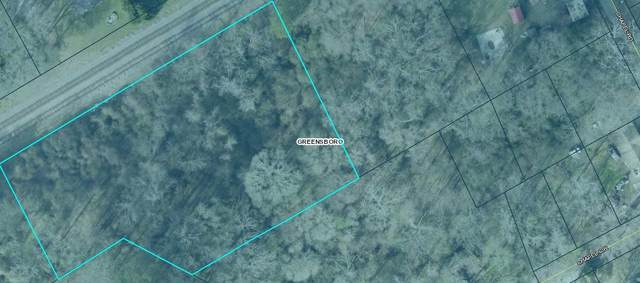 1.13ac Railroad Street, Greensboro, GA 30669 (MLS #56748) :: Team Lake Country