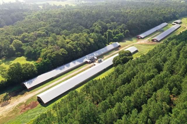 2380 Sandy Creek Road, Madison, GA 30650 (MLS #57200) :: Team Lake Country