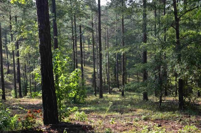 475 Pea Ridge Road, Eatonton, GA 31024 (MLS #57210) :: Team Lake Country