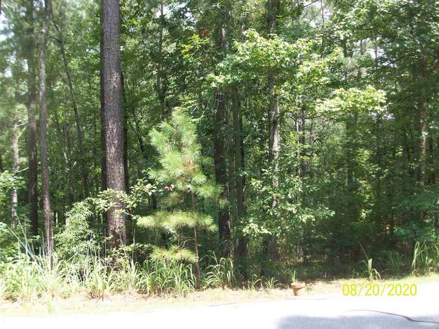1381 Snug Harbor Drive, Greensboro, GA 30642 (MLS #57274) :: Team Lake Country