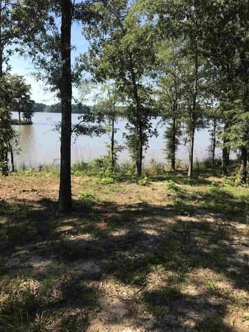 Lot 19 Bayside, Greensboro, GA 30642 (MLS #57662) :: Team Lake Country