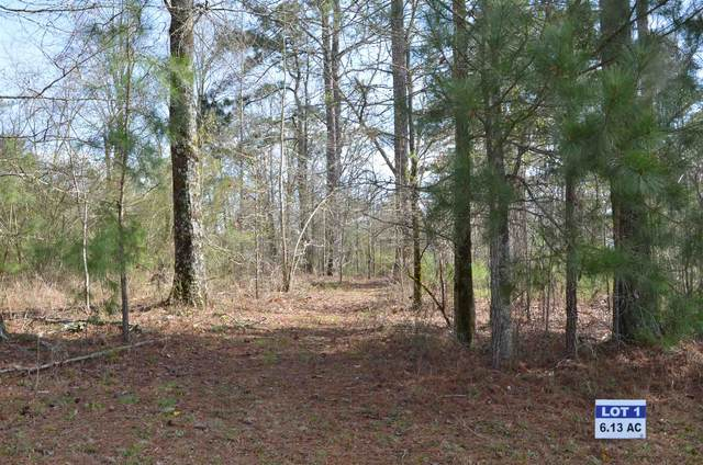 Lot 1 Eagle Way Drive, Greensboro, GA 30642 (MLS #58843) :: Team Lake Country