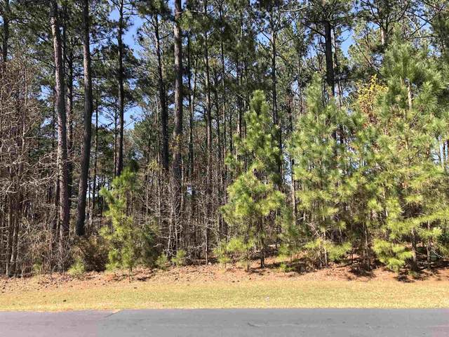 1041 Big Water Point, Greensboro, GA 30642 (MLS #58853) :: Team Lake Country