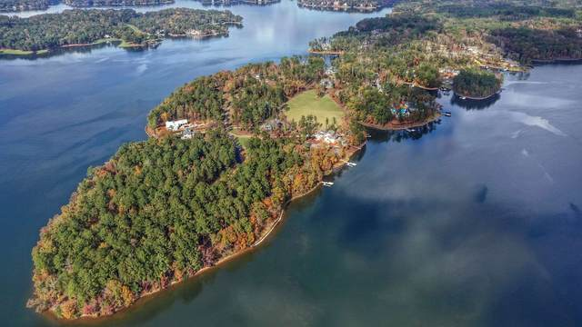 1050 Preservation Point, Greensboro, GA 30642 (MLS #58976) :: Team Lake Country