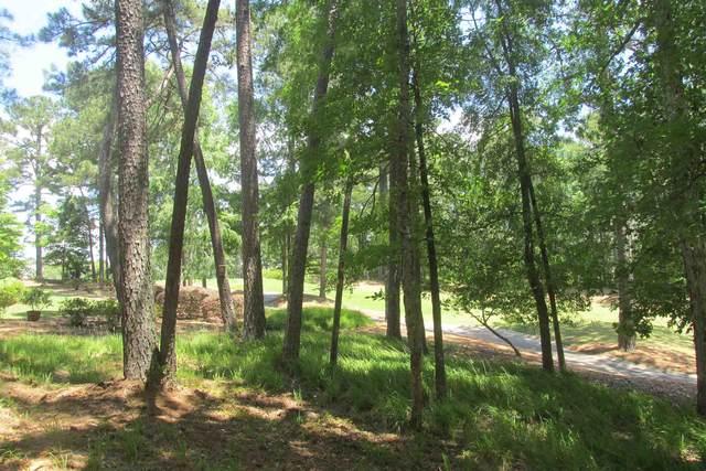 1020 Hardwood Hollow, Greensboro, GA 30642 (MLS #59489) :: Team Lake Country