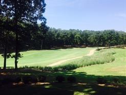 1041-B Club House Lane, Greensboro, GA 30642 (MLS #50085) :: Team Lake Country