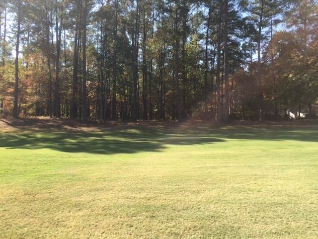 1680 Club Drive, Greensboro, GA 30642 (MLS #57414) :: Team Lake Country
