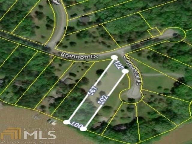 1011 Chips Place, Greensboro, GA 30642 (MLS #58605) :: Team Lake Country