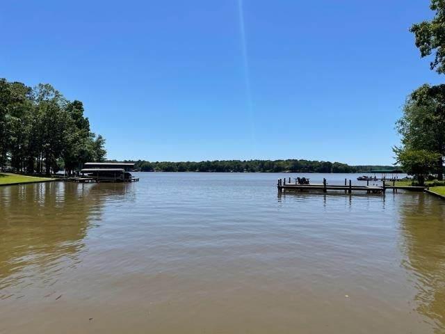 1271 Big Water Circle, Greensboro, GA 30642 (MLS #59851) :: Team Lake Country