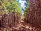 4493 County Road 37 - Photo 3