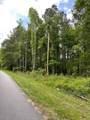 0 Bud Black Road - Photo 4