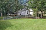 256 Day Lily Street - Photo 6