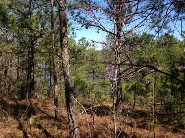 0 Murphy Dam Road, DADEVILLE, AL 36853 (MLS #118943) :: The Mitchell Team