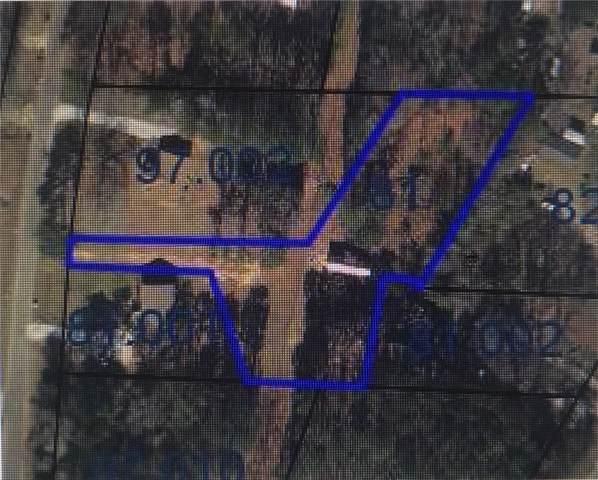 1761 Old Wrights Mill Road, AUBURN, AL 36830 (MLS #140758) :: Crawford/Willis Group