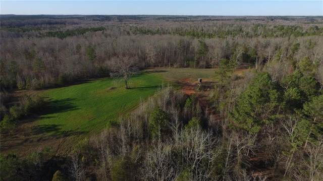 1431 County Road 12, WAVERLY, AL 36879 (MLS #144827) :: Crawford/Willis Group