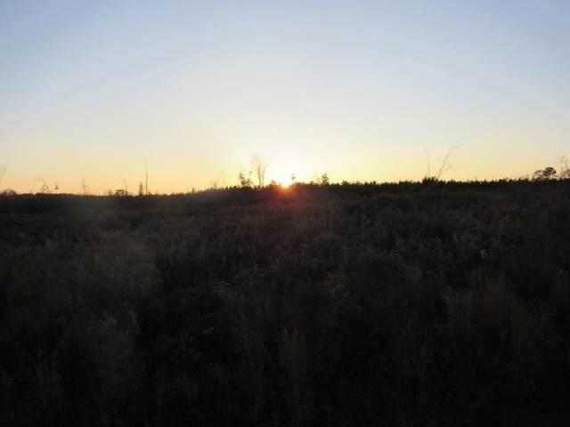 0 County Road 94, OPELIKA, AL 31801 (MLS #148690) :: Crawford/Willis Group