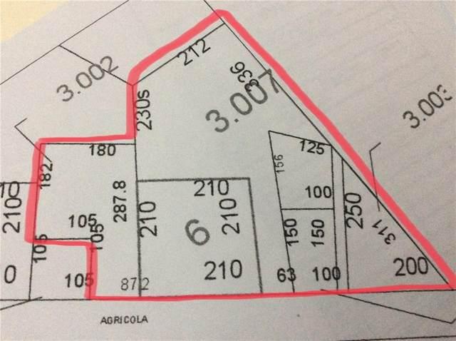 5602 County Road 34, DADEVILLE, AL 36853 (MLS #151913) :: Kim Mixon Real Estate