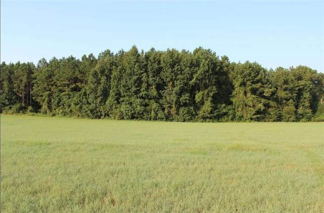 0 County Road 69, AUBURN, AL 36803 (MLS #153667) :: Crawford/Willis Group
