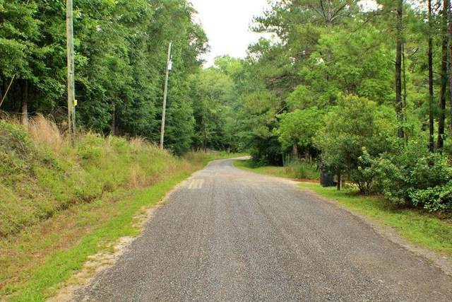 LOT Lakeview Drive, DADEVILLE, AL 36853 (MLS #153742) :: Crawford/Willis Group