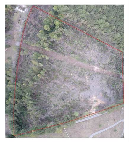 Lot 10 Hillabee Street, ALEXANDER CITY, AL 35010 (MLS #142827) :: The Mitchell Team