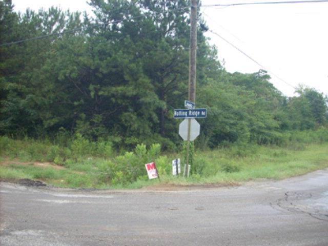4031 Rolling Ridge Road, AUBURN, AL 36830 (MLS #102759) :: Crawford/Willis Group