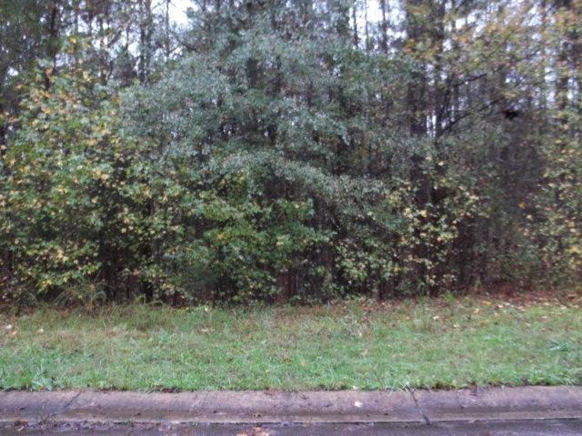 Lot #59 Brittany Lane, LANETT, AL 36863 (MLS #126604) :: The Mitchell Team
