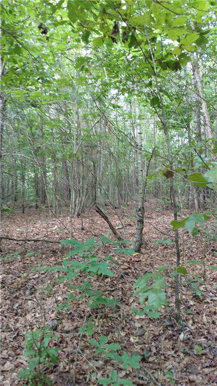 000 Lot P10 County Road 129, RANBURNE, AL 36273 (MLS #128231) :: The Mitchell Team